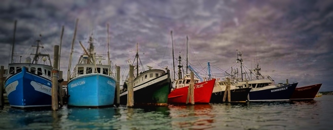 fishing boats in montauk