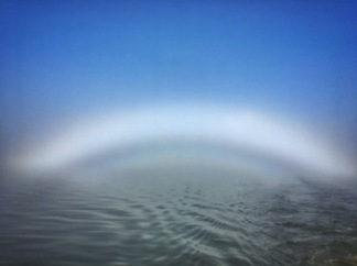 """Fogbow"" - yes, there is such a thing."